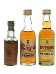 Assorted Spanish Brandy Bottled 1950s-1970s 3 x 3cl-4.5cl