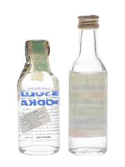 Absolut & Moskovskaya Vodka  2 x 5cl / 40%