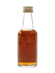 Wild Turkey Rye 101 Proof Bottled 1990s 5cl / 50.5%