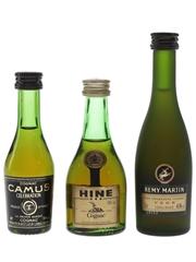 Camus, Hine & Remy Martin Bottled 1980s 3 x 3cl-5cl / 40%