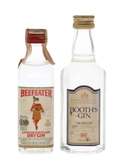 Beefeater & Booth's Gin