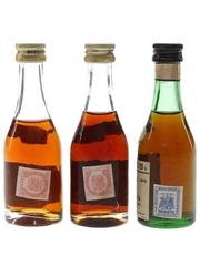 Don Juan & Torres Brandy  3 x 4cl / 40%