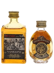 Tombolini Napoleon & Vecchia Romagna Brandy  2.5cl & 3cl