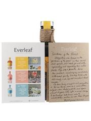 Orangutan Paul Mathew - Everleaf Drinks 50cl / 0.3%