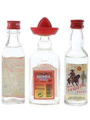 Campeny, Morey & Sierra Tequila  3 x 4cl-5cl