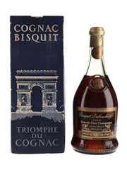 Bisquit Dubouche 45 Year Old Extra Vieille