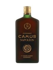 Camus Napoleon