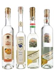 Assorted Hungarian Palinka  4 x 20cl & 50cl