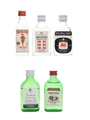 Booth's, Beefeater, Gordon's, High & Dry & Squires