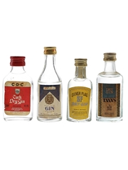 Assorted Gin