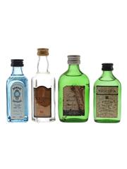 Bombay Sapphire, Booth's, Gordon's & White Satin