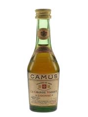 Camus Celebration La Grande Marque