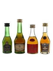 Baron Otard, Cognac Roy, Chateau Paulet & Martell VS