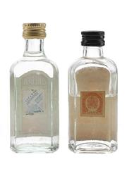 D&A Ginebra & Gin Beltran  2x 4cl-5cl