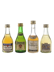 Assorted French Brandy