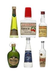 Italian Bitters & Liqueurs Miniatures