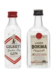 Gilbey's Gin & Bokma Jenever