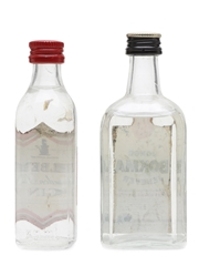 Gilbey's Gin & Bokma Jenever  10cl & 5cl