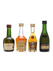Assorted Cognac Miniatures
