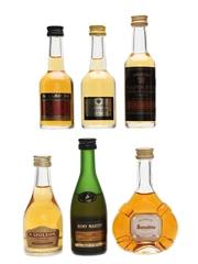 French Brandy, Cognac, Armagnac & Calvados