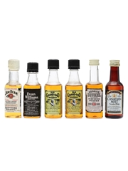 6 x Assorted Whiskey Miniatures