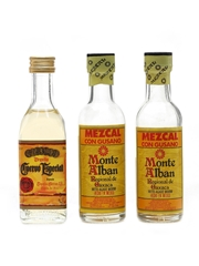 Cuervo Tequila & Monte Alban Mezcal