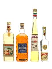 Buton, Galliano, Sarti & Strega Liqueur