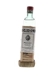 Maraschino Drioli