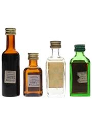 Assorted Liqueurs Bergia, Cointreau, Jagermeister & Stock 4 x 2cl-3.8cl