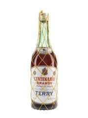 Fernando A De Terry Brandy