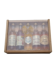 Brillet Cognac, Pineau And Liqueur Set  5 x 5cl