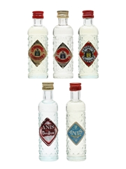 Spanish Anise Liqueurs Campeny, Mahon, Montara 5 x 4.5cl-5cl