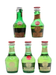 Benedictine DOM Bottled 1960s-1980s 5 x 3cl