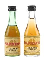 Napoleon Guillaume Brandy Spain 2 x 5cl / 37%