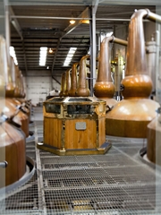 Ailsa Bay Distillery Trip