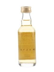 Loch Indaal 1983 Bottled 1994 - The Master Of Malt 5cl / 43%
