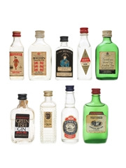 Assorted Gins