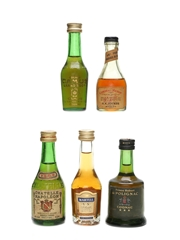 Assorted Cognac Incl. Polignac, Camus & Martell 5 x 5cl