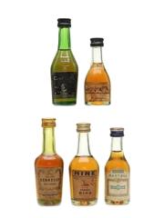 Assorted Cognac Hine, Hennessy, Martell, Camus & Delamain 5 x 5cl