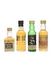 Assorted Single Malt Whisky Incl. Highland Park & Springbank 4 x 5cl