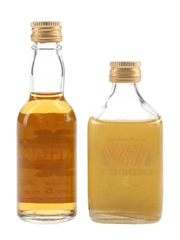 Dunglass & Grendel's 5 Year Old  2 x 3.7cl-5cl