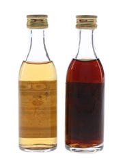 Stock Bianco & Italian Vermouth  2 x 5cl / 17.5%