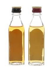 Black Bush & Bushmills 10 Year Old Bottled 1980s 2 x 5cl / 40%