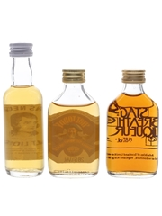Assorted Whisky Liqueurs Burns Nectar, Hot Today & Stag's Breath 3 x 5cl