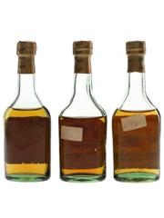 Gonzalez Byass 96, Insuperable & Soberano Bottled 1960s-1970s 3 x 5cl