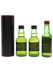 Black Bottle Bottled 1970s & 1980s 3 x 5cl / 40%