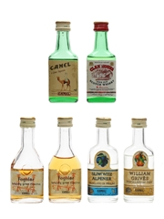 Assorted Camel Spirits  6 x 2.8cl