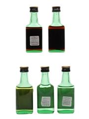 Assorted Camel Liqueurs  5 x 2.8cl