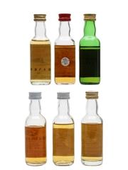 Assorted Blended Scotch Whisky Dun Carloway, Glen Calder, Glen Saunders, Leland's, Pheasant Plucker, Te Bheag 6 x 5cl / 40%