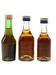 Martell 3 Star & Medaillon VSOP Bottled 1970s & 1980s 3 x 3cl-5cl / 40%
